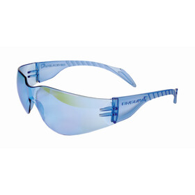Endura Rainbow Cykelbriller Damer, blue